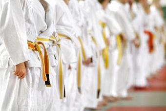 Karate Lessons for Children